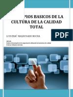 Principios Basicos de La Cultura de La c