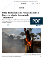 """Onda de Incêndios Na Amazônia Sobe e Governo Admite Descontrole """"Criminoso"""" _ Brasil _ EL PAÍS Brasil"""
