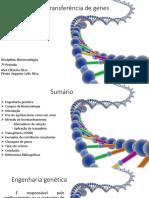 Ramon 2017 - Biotecnologia