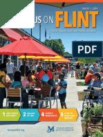 Focus on Flint