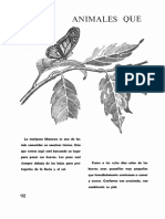 33-Animales-que-cambian-de-forma.pdf