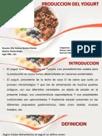 Produccion Del Yoghurt-08