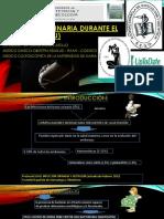 Infección Urinaria Durante el Embarazo (ITU) deyner expo.pptx
