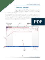 MANUAL WORD 2013.pdf