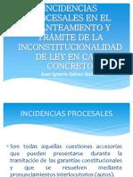 Presentación Incidencias Procesales y planteamientos de Inconstitucionalidad.pdf