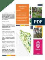 Ecoplant-recuperacion de Parques y Jardines en Las Zonas de Periferia