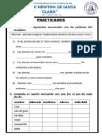 Ficha de Clasificacion de Plantas