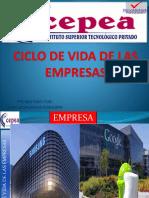 01-Ciclo de Vida de Las Empresas Juan Apaza