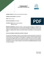Informe de evolución final Yefferson.docx