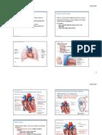 cardiovascular notes