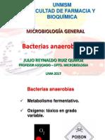 Microorganismos anaerobios 2017