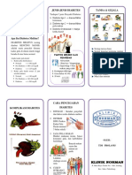 Leaflet Dm Pada Lansia