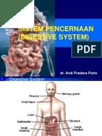Fisiologi Sistem Pencernaan