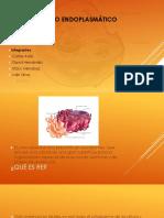 Retículo-Endoplasmático prrank