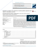 (L) Strategies to Enhance the Production of Photosynthetic Pigments and Lipids in Chlorophycae Species