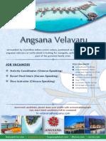 Job Vacancies - 22 Aug 2019