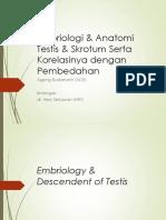 Embriologi Anatomi Testis Dan Skrotum - Pembedahan