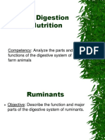 Animal-Digestion-system.pdf