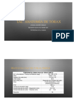 Anatomía de Tórax TAC