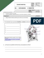 Examen Bimestral de BIOLOGIA I AÑO