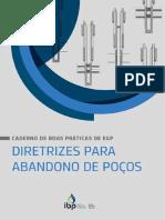 IBP CBP EP Caderno Boas Praticas Diretrizes Poço