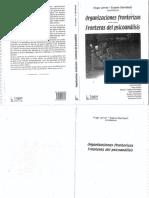 Organizaciones Fronterizas Fronteras Del Psicoanalisis