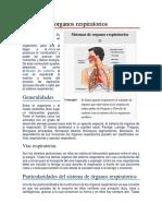 Sistemas de Organos Respiratorios
