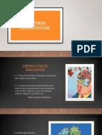 POSTURAS IDEOLÓGICAS.pptx