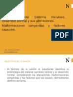 Semana 1 embriologia del sistema nervioso y malformaciones.ppt