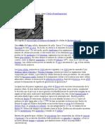 LA CELULA.docx