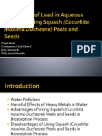 Adsorption of Lead in Aqueous Solution Using Squash