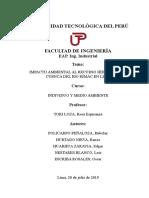 Caratula, introducción y caushas.docx