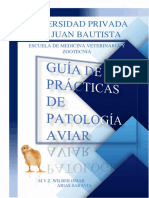 Guia de Practicas de Patologia Aviar