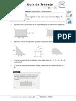 8Basico - Guia Trabajo Matematica - Semana 21