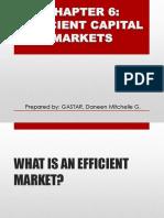 Efficient Capital  Markets- Daneen Gastar
