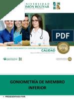 Goniometria MI
