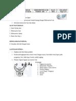 Job Sheet Micromtr