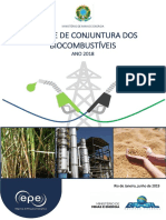 Análise_de_Conjuntura_Ano 2018.pdf