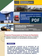 PROGRAMAS_PRESUPUESTALES.pdf