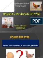 Raças e Linhagens de aves