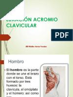Lx Acromioclavicular