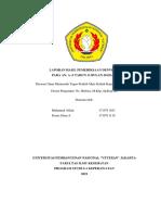 laporan denver II