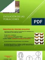 Evolución+de+las+poblaciones+C