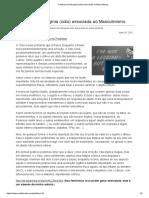 A falacia da misoginia (ódio) associada ao Masculinismo.pdf
