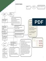 Diagrama de Flujo Del Proceso de Obtención y Almacenamiento de Imágenes digitales