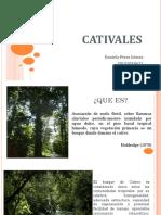 CATIVALES