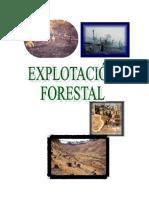 Explotacion Forestal
