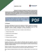 ENFOQUES_DE_LA_TGS.pdf