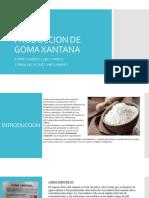 PRODUCCION DE GOMA XANTANA.pptx