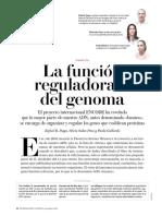 313144528-CONTROL-4-La-Funcion-Reguladora-Del-Genoma-desbloqueado.pdf